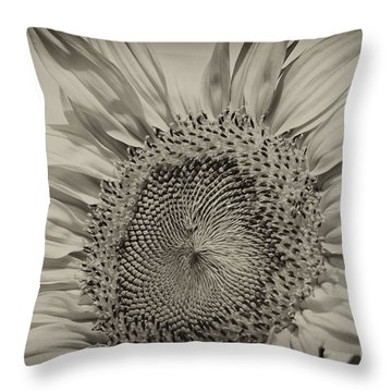 Throw Pillow featuring the photograph Summer Sunflower by Wilma  Birdwell