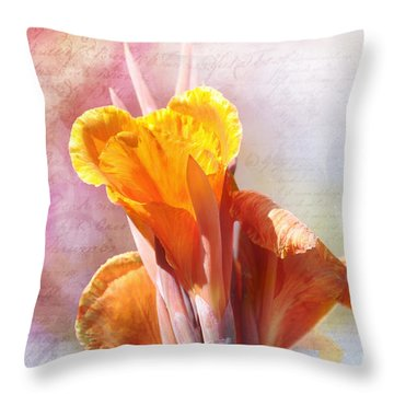 Throw Pillow featuring the photograph Summer Sunset by Elaine Manley