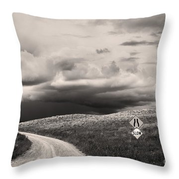 Summer Tempest Throw Pillow by Sandi Mikuse