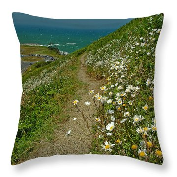Throw Pillow featuring the photograph Summer Time At Yaquina Head by Nick  Boren