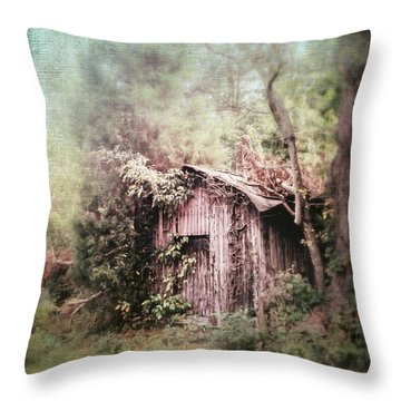 Summerfield Shed Throw Pillow