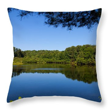 Summers Blue View Throw Pillow by Karol Livote