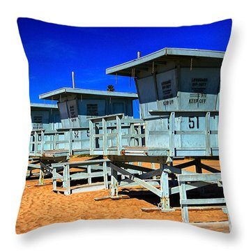 Summers Sentinels 2 Throw Pillow by David Doucot