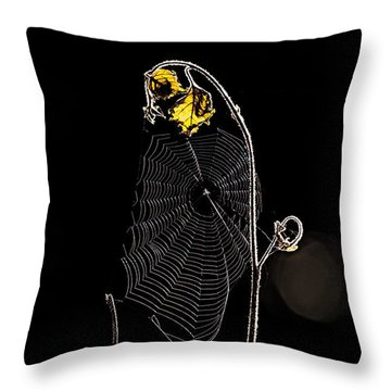 Summers Web Before Sunrise Throw Pillow by Bob Orsillo