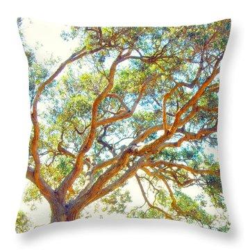 Summertime Tree Throw Pillow
