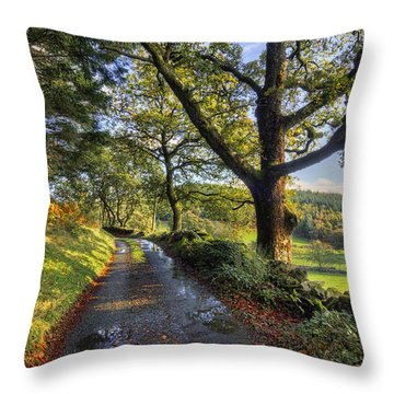 Sun After The Rain Throw Pillow