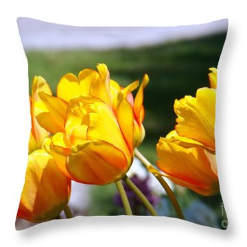 Sun And Fun Throw Pillow