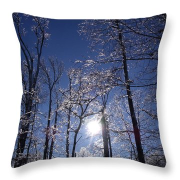 Throw Pillow featuring the photograph Sun And Ice by Lyric Lucas