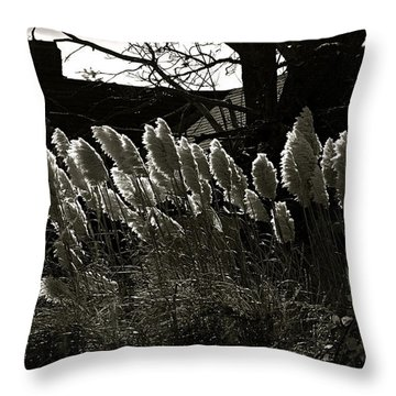 Sun And Shadow Throw Pillow