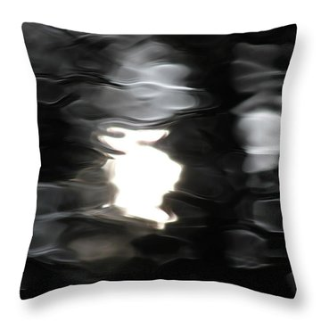 Throw Pillow featuring the photograph Sun And Water  by Penny Meyers
