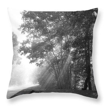 Sun Beams Throw Pillow by Todd Hostetter