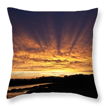 Sun Blast Throw Pillow by David Davies