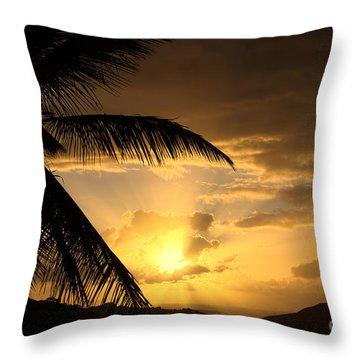 Sun Blast Throw Pillow
