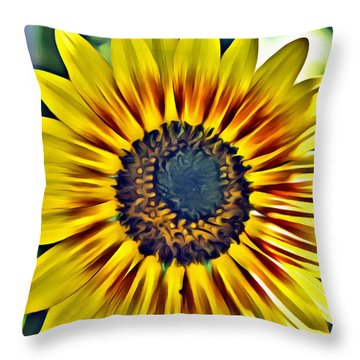 Sun Burst  Throw Pillow