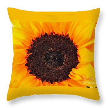 Sun Delight Throw Pillow by Angela J Wright