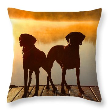Sun Dogs Throw Pillow