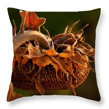 Throw Pillow featuring the photograph Sun Down by Laura Ragland