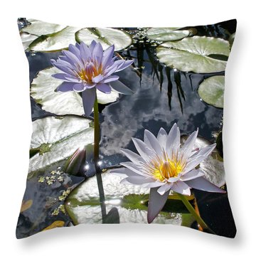 Sun-drenched Lily Pond         Throw Pillow