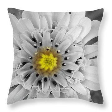 Throw Pillow featuring the photograph Sun Drop by Janice Westerberg