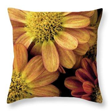 Throw Pillow featuring the photograph Sun Fans by Jean OKeeffe Macro Abundance Art