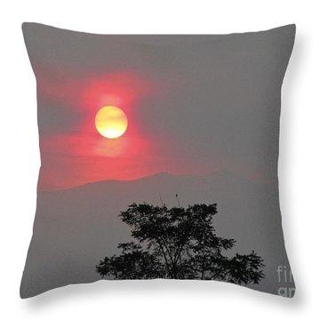 Sun Fire Tree Throw Pillow by Phyllis Kaltenbach