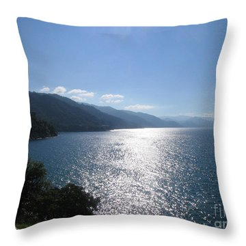 Sun Flare On The Bay Throw Pillow
