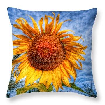 Sun Flower Throw Pillow by Adrian Evans