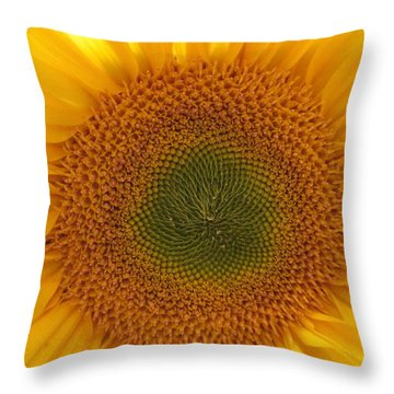 Sun Flower Dream - No Border Throw Pillow