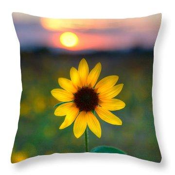 Sun Flower Iv Throw Pillow
