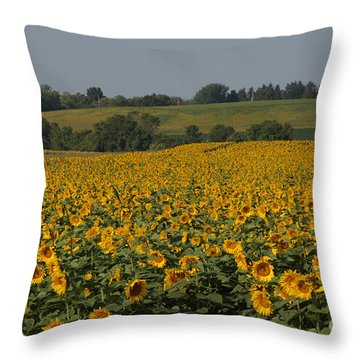 Sun Flower Sea Throw Pillow
