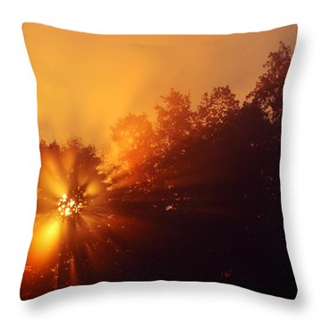 Sun Fog Trees-1 Throw Pillow