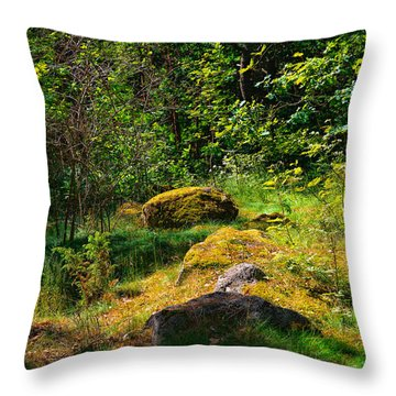 Throw Pillow featuring the photograph Sun In The Forest by Leif Sohlman