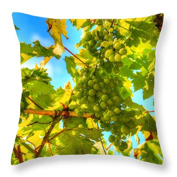 Sun Kissed Green Grapes Throw Pillow by Eti Reid