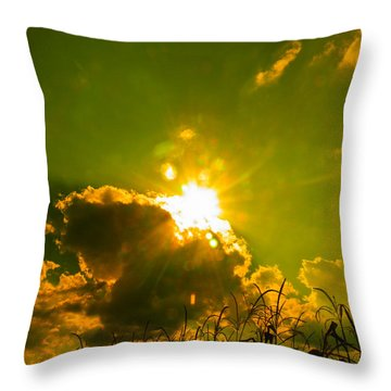 Sun Nest Throw Pillow