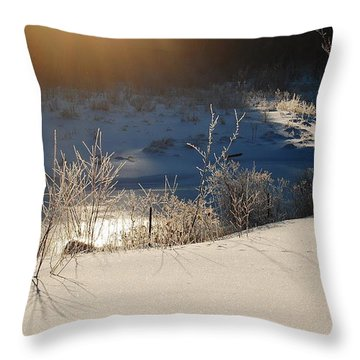 Throw Pillow featuring the photograph Sun On Snow by Mim White