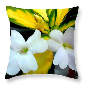 Sun Patiens Spreading White Variagated Throw Pillow