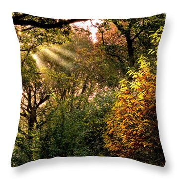 Sun Rays Throw Pillow by Trevor Chriss