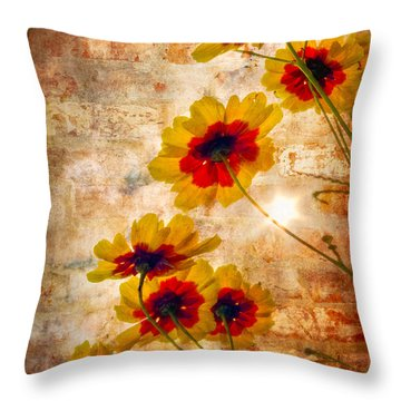 Sun Seekers Throw Pillow by Debra and Dave Vanderlaan