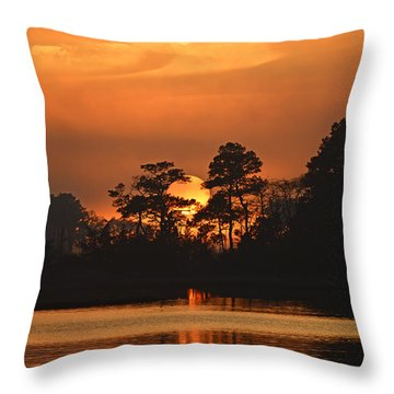 Throw Pillow featuring the photograph Sun Setting In Trees by Bill Swartwout