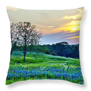 Sun Setting On Another Texas Day Throw Pillow