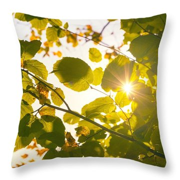 Throw Pillow featuring the photograph Sun Shining Through Leaves by Chevy Fleet