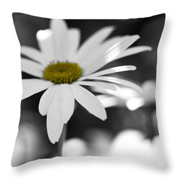 Sun-speckled Daisy Throw Pillow by Don Schwartz