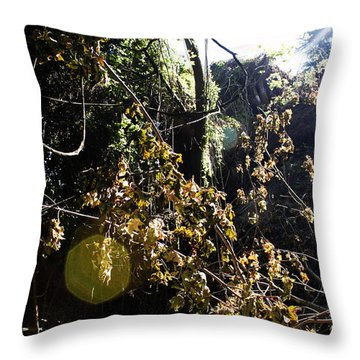 Sun Spot Throw Pillow