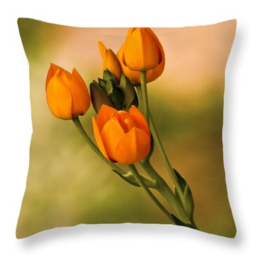 Sun Star Flower Throw Pillow