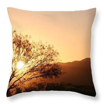 Sun Tree Throw Pillow