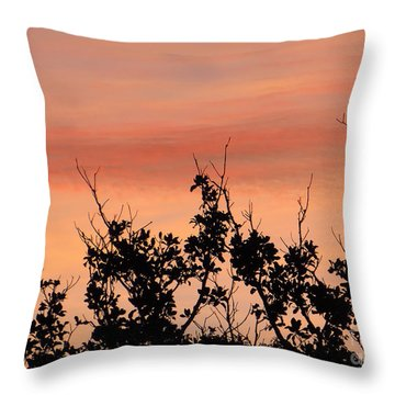 Throw Pillow featuring the photograph Sun Up Silhouette by Joy Hardee