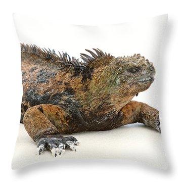 Sunbather Throw Pillow