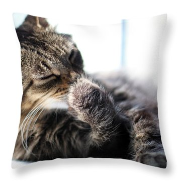 Sunbathing Throw Pillow