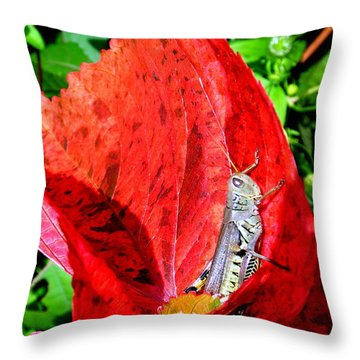 Sunbathing Throw Pillow by Zafer Gurel
