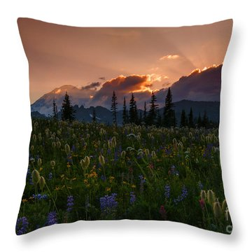 Sunbeam Garden Throw Pillow